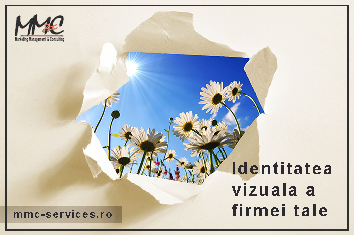 identitatea vizuala
