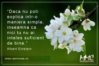 Albert Einstein.jpg